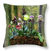 Orchid Basket Throw Pillow