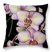 Orchid Blossoms I Throw Pillow