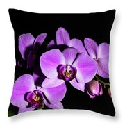 Orchid Blossoms IIi Throw Pillow