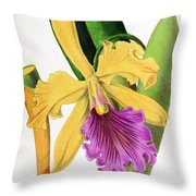Orchid, Cattleya Dowiana, 1880 Throw Pillow