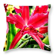Orchid Cattlianthe Hybrid Throw Pillow