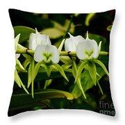 Orchid Choir Throw Pillow