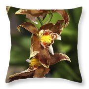 Orchid Curve Throw Pillow