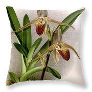 Orchid, Cypripedium Elliottianum, 1891 Throw Pillow