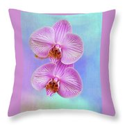 Orchid Delight - Two Blooms Against A Rainbow Background Throw Pillow