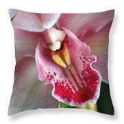 Orchid Dust Throw Pillow