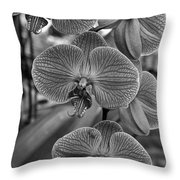 Orchid Glory Black And White Throw Pillow