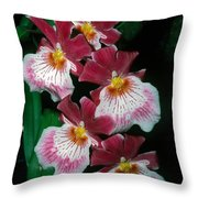 Orchid Group Throw Pillow