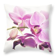 orchid II Throw Pillow