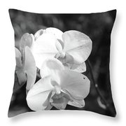 Orchid In Black And White Throw Pillow