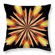 Orchid Kaleidoscope 10 Throw Pillow