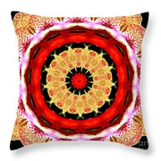 Orchid Kaleidoscope 6 Throw Pillow