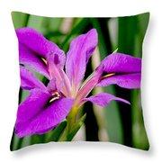Orchid Iris Throw Pillow