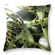 Orchid Lumin Throw Pillow