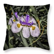 Orchid Magic Throw Pillow