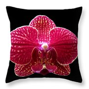 Orchid On Black 2 Throw Pillow