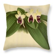 Orchid Phalaenopsis Violacea Singapore  Throw Pillow