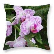 Orchid Pink Throw Pillow