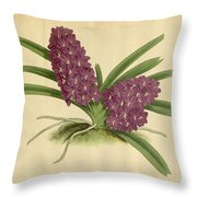 Orchid Saccolabium Ampullaceum  Throw Pillow