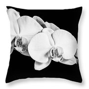 Orchid - Bw Throw Pillow