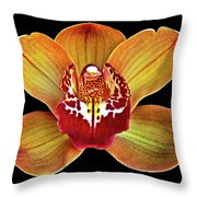 Orchid Splendor Throw Pillow