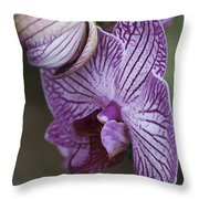 Orchid Strips Throw Pillow