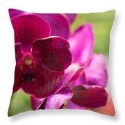 Orchid Vanda Ratchaburi Waxy Red Throw Pillow