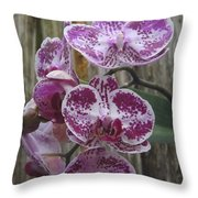 Orchid With Purple Patches Throw Pillow