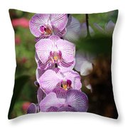 Orchid Wonders Throw Pillow