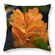 Orchid Yip Sum Wah Orange Throw Pillow