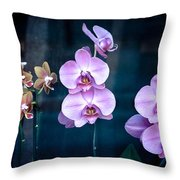 Orchidae Throw Pillow