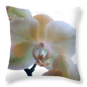 Orchids 3 Throw Pillow by Mike McGlothlen