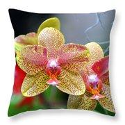 Orchids 35 Throw Pillow