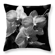 Orchids In Black And White Throw Pillow