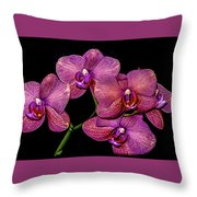 Orchids In Bloom Throw Pillow