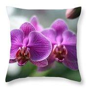 Orchids In Flight Throw Pillow