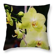 Orchids In New York Throw Pillow