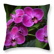 Orchids In Vivid Pink  Throw Pillow
