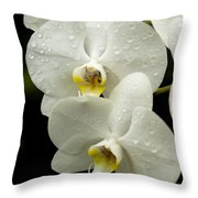 Orchids Kauai Throw Pillow