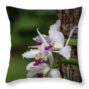 Orchids On A Tree Throw Pillow