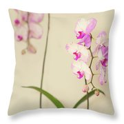 Orchids On Sideboard Throw Pillow