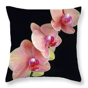 Orchids Reach For The Rainbow Throw Pillow