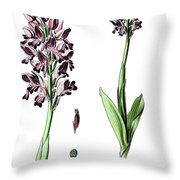 Orchis Militaris, The Military Orchid Throw Pillow