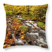 Oregon Autumn Beauty Throw Pillow