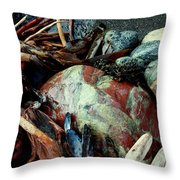 Oregon Beach Treasures #2 Throw Pillow