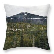 Oregon Cascade Range Forest Throw Pillow
