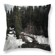 Oregon Cascade Range River Throw Pillow