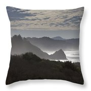 Oregon Coast #4 Throw Pillow