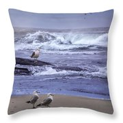 Oregon Coastal Morning Throw Pillow