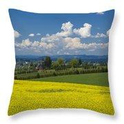 Oregon Countryside Throw Pillow